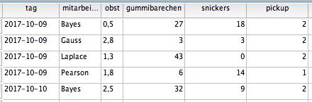 Abbildung der Daten in SPSS