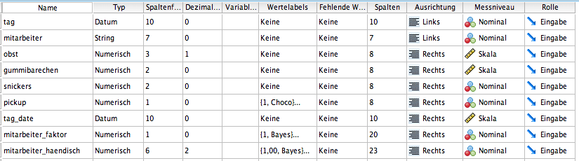 Datensturktur in SPSS - nachher